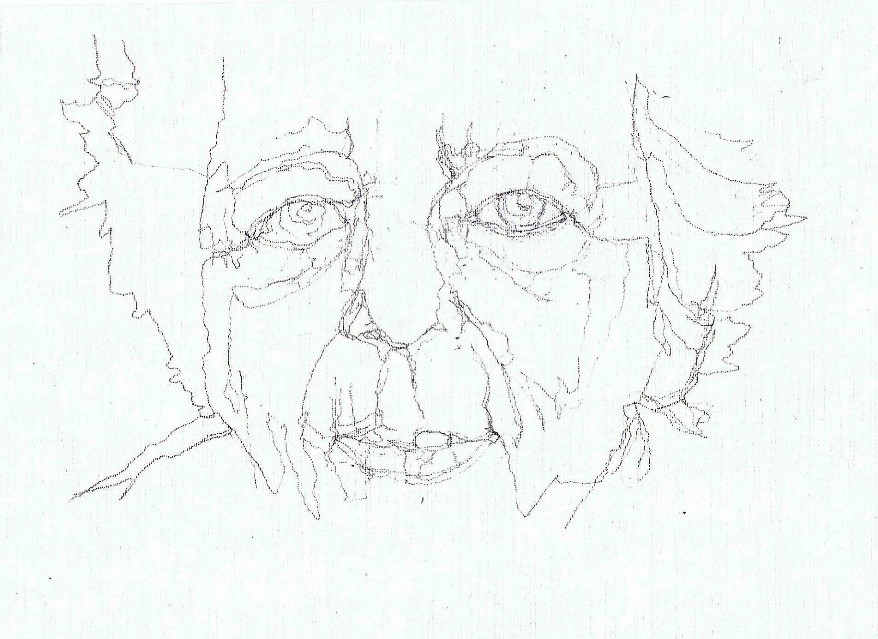 365 dagen een portret Renate Dorrestein, schrijfster Potlood 19c25