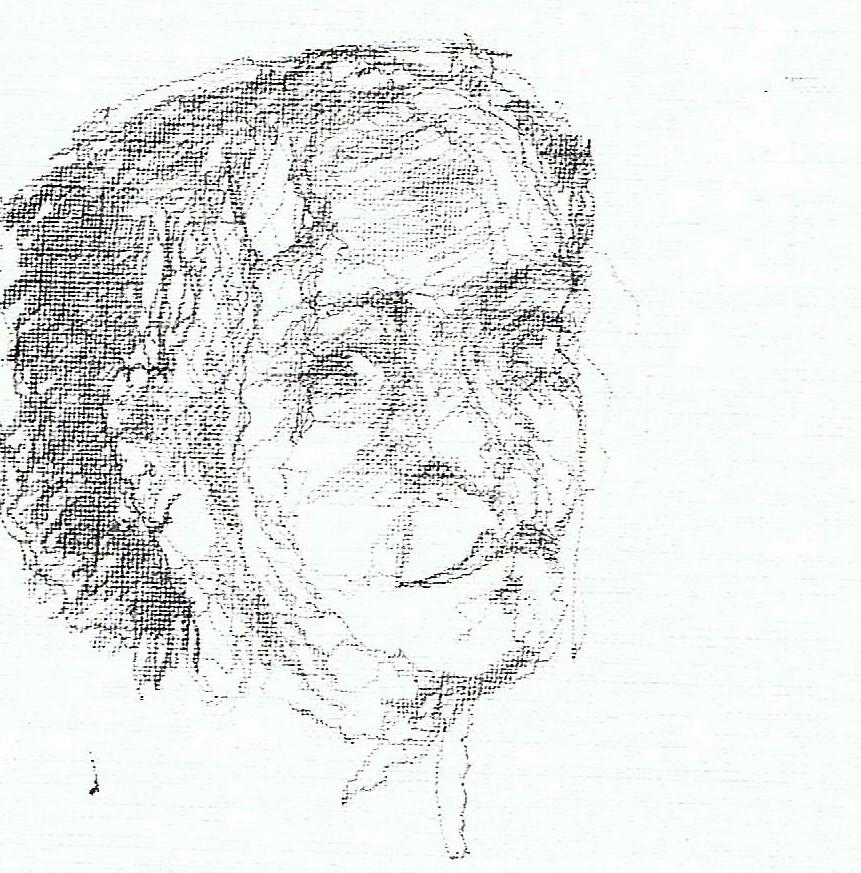 365 dagen een portret Irraby Potlood 19c25