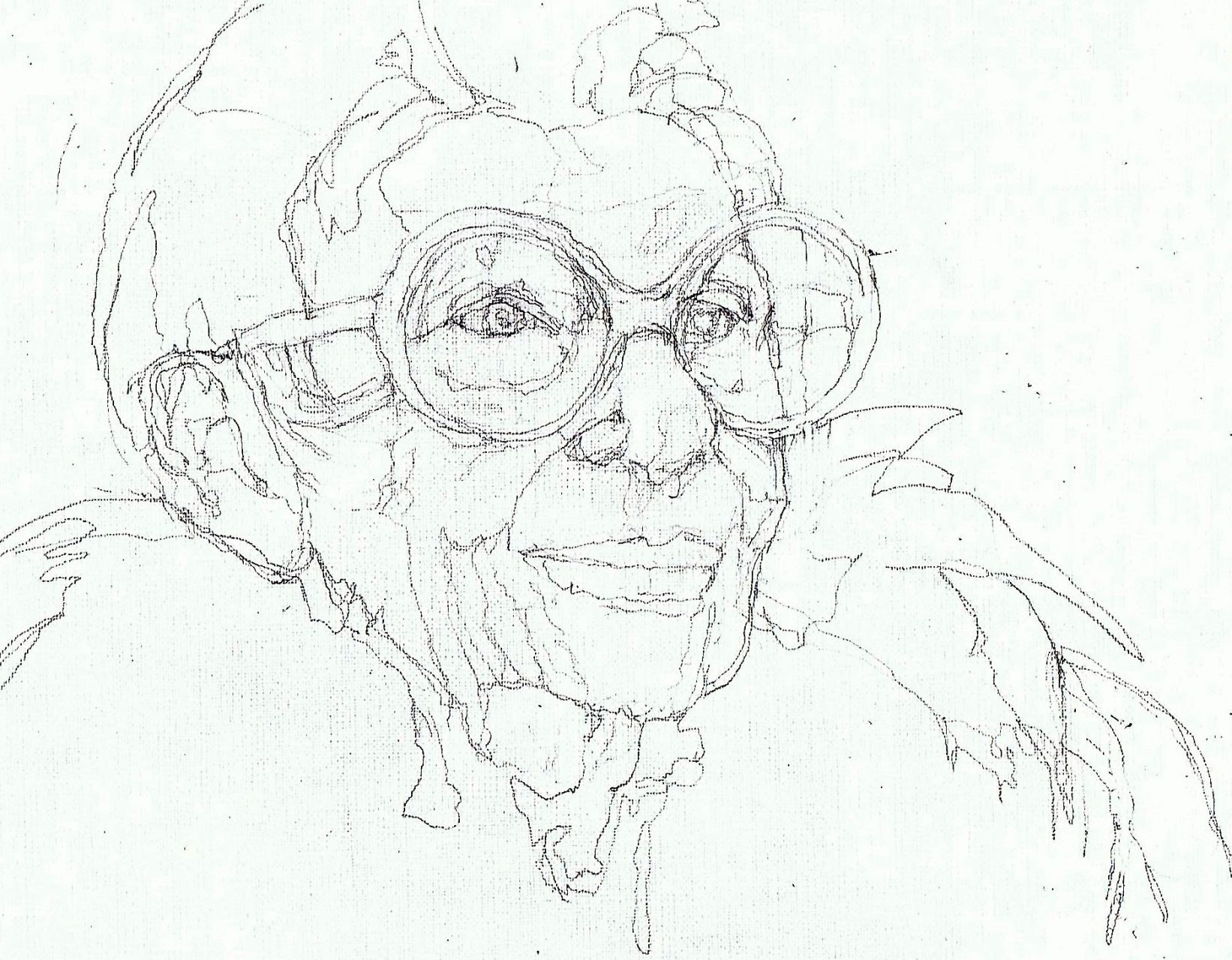 365 dagen een portret Iris Apfel met veren Potlood 19c25