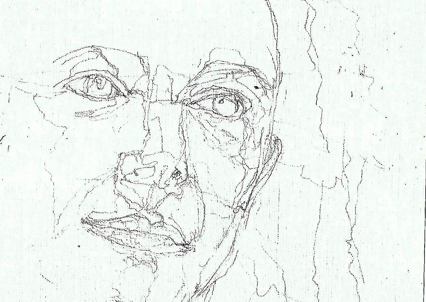 365 dagen een portret 167 Femke Halsema, politica Potlood 19c25