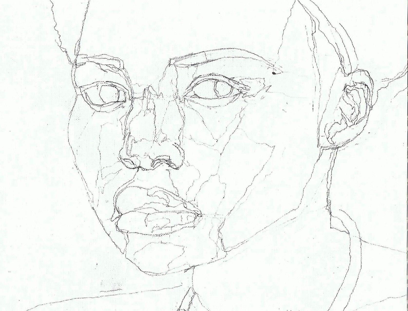 365 dagen een portret 143 Lupita Nuong'o, actrice Potlood 19c25