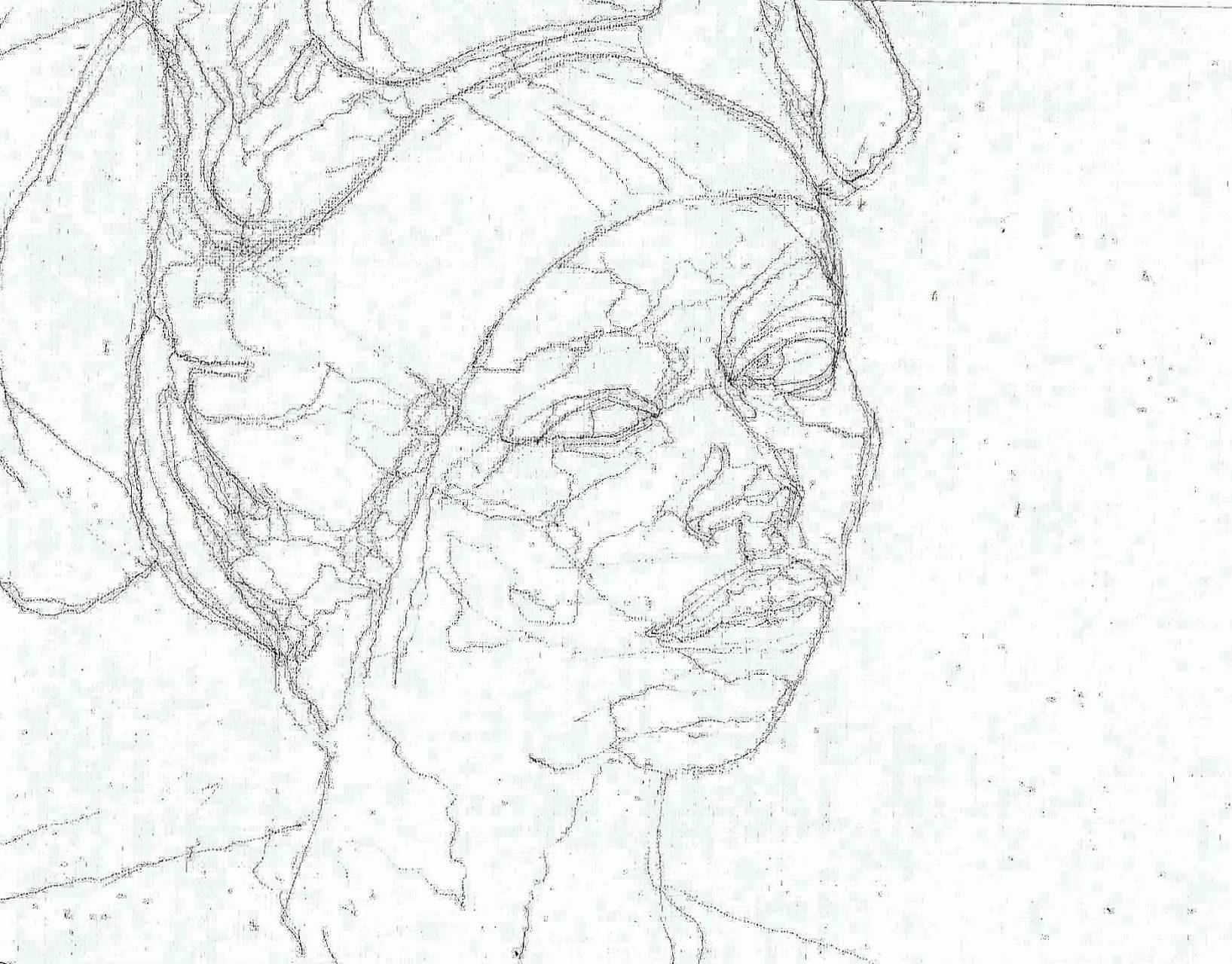365 dagen een portret 130 Afrikaanse met blauwe trui Potlood 19c25