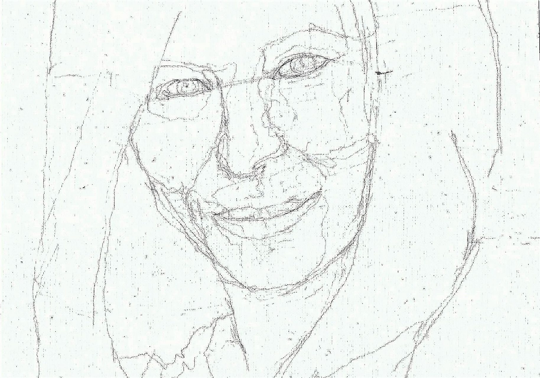 365 dagen een portret 85 Barbara Streisand, zangeres Potlood 19c25