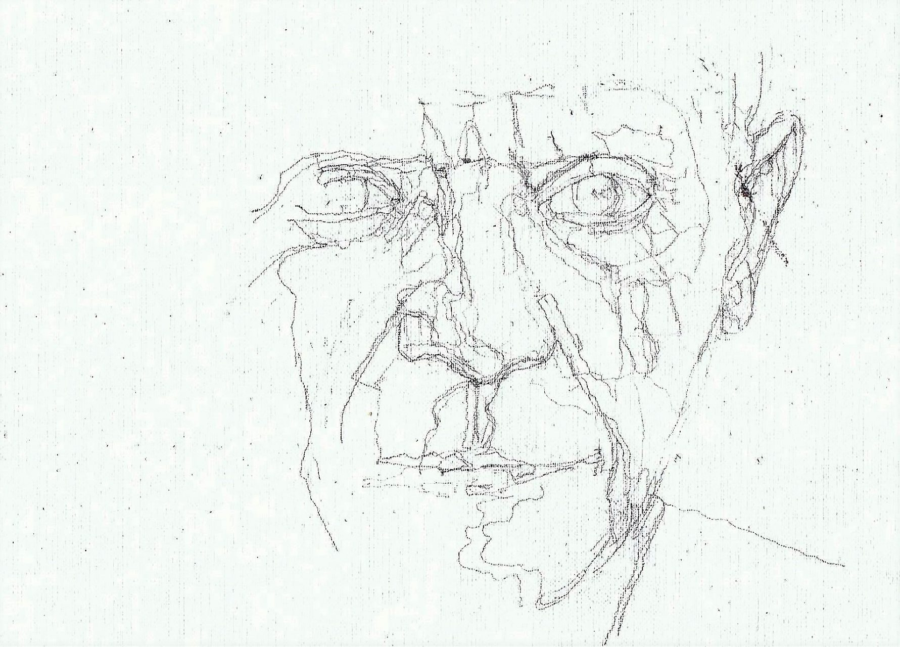 365 dagen een portret 75 Picasso, kunstenaar Potlood 19c25