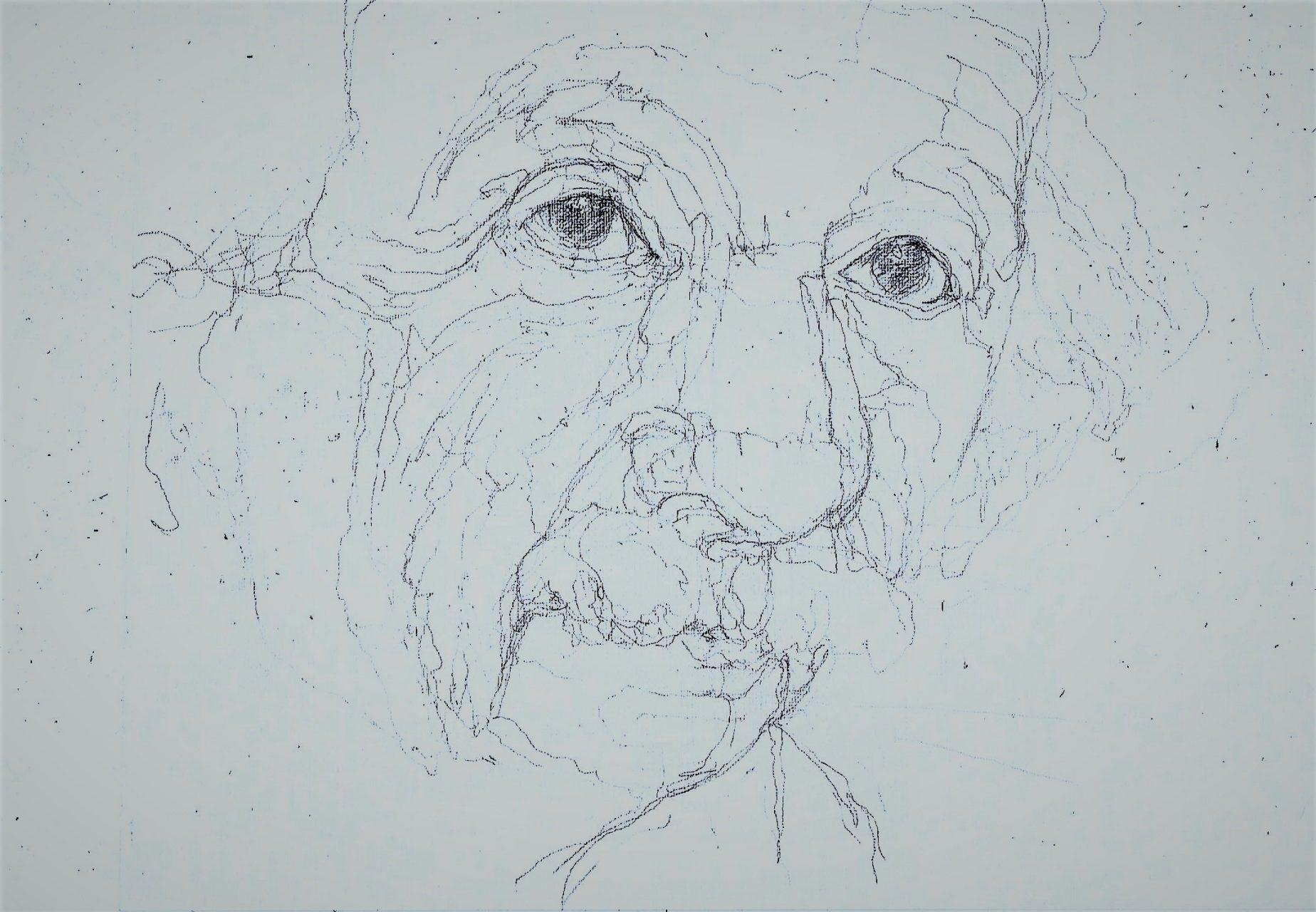 365 dagen een portret 70 Albert Einstein , natuurkundige Potlood 19c25