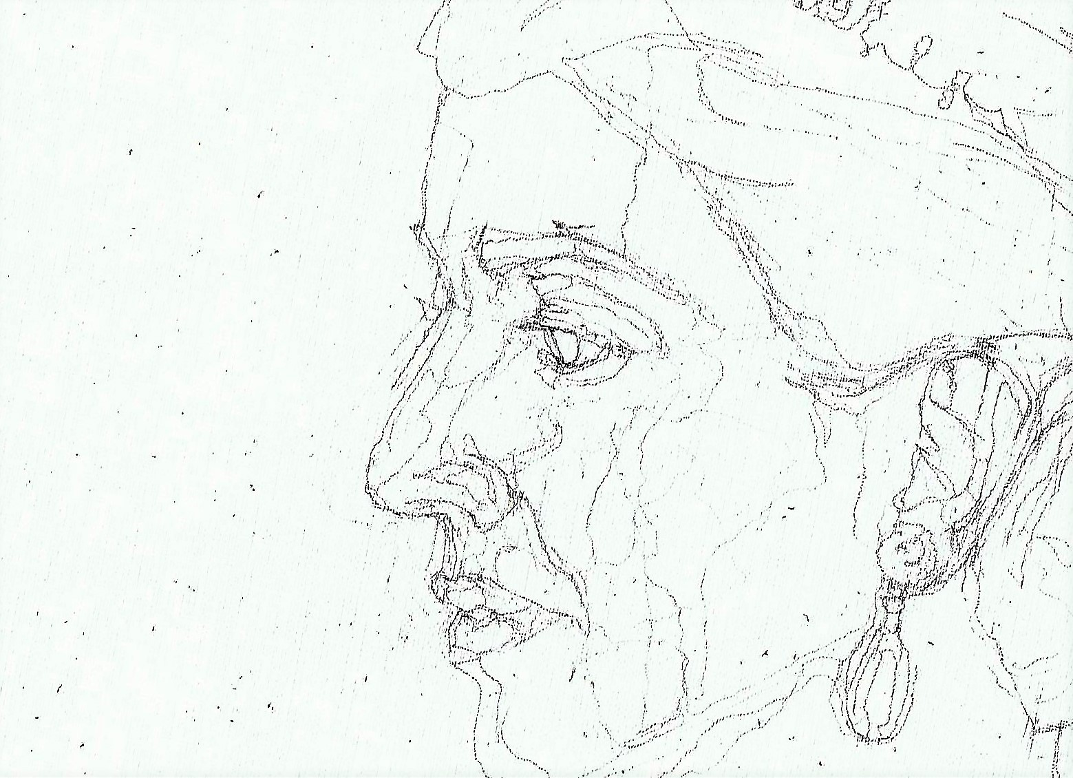 365 dagen een portret 65 Maxima, koningin Potlood 19c25