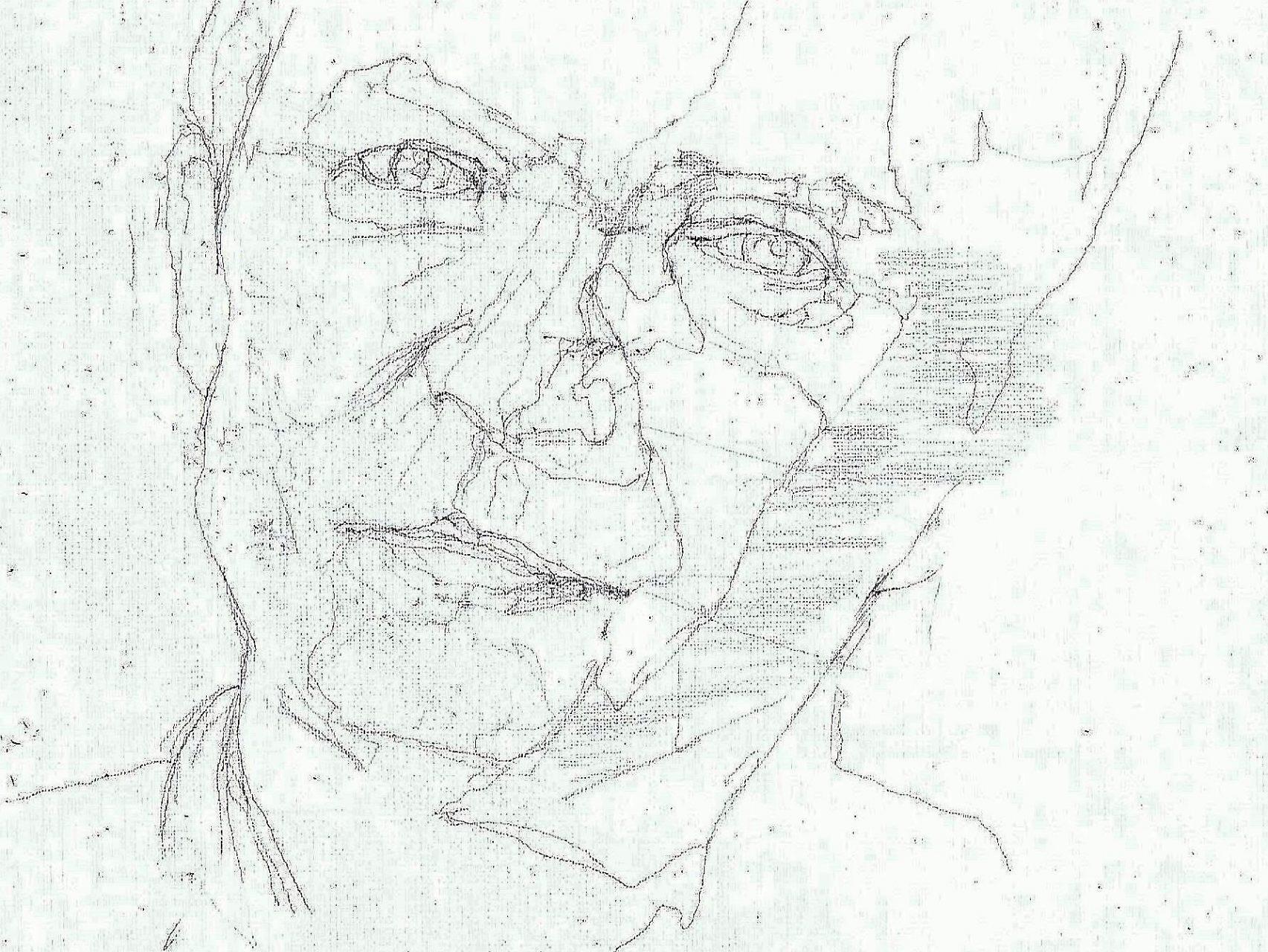 365 dagen een portret 43 Herman Finkes, cabaretier Potlood 19c25