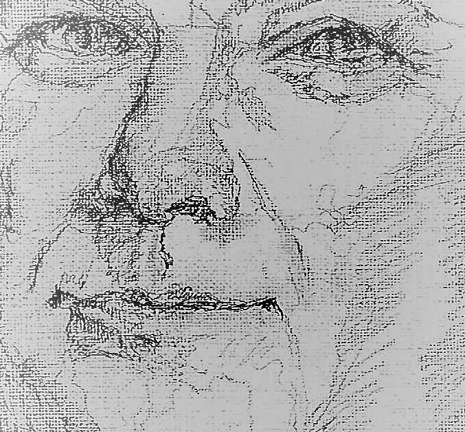 365 dagen een portret 31 Paul de Leeuw, komiek Potlood 19c25