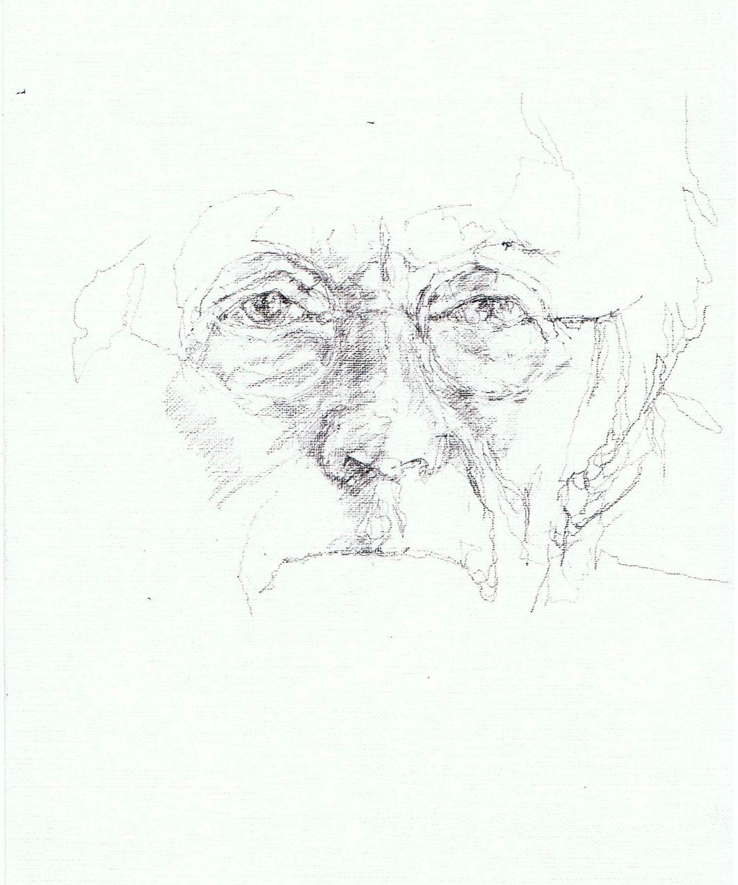365 dagen een portret Freek de Jonge, cabaretier Potlood 19c25